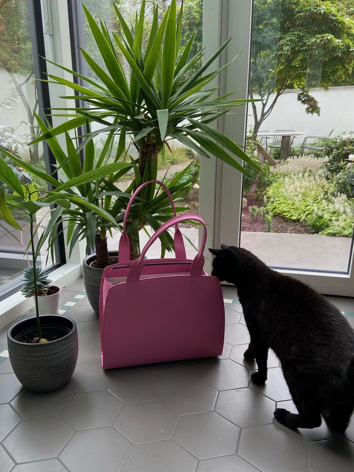Anke Runge Adele pink plus Katze 1