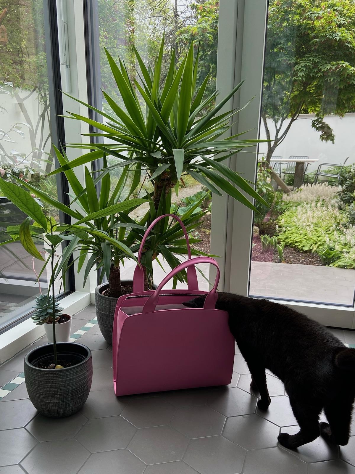 Anke Runge Adele pink plus Katze 2
