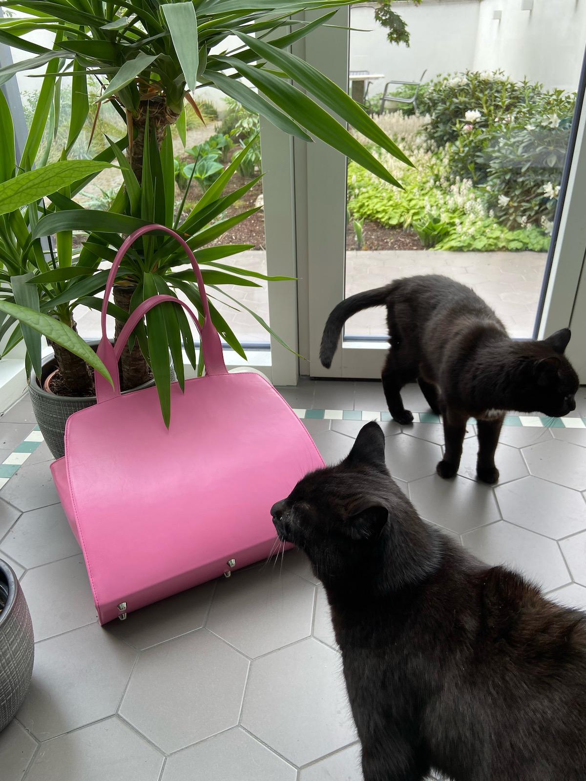 Anke Runge Adele pink plus Katze 3