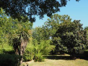 """Neu im """"Garten"""": der grüne Salon und Benachrichtigungen"""