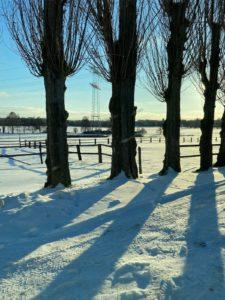 Hautpflege für den Winter im Rückblick